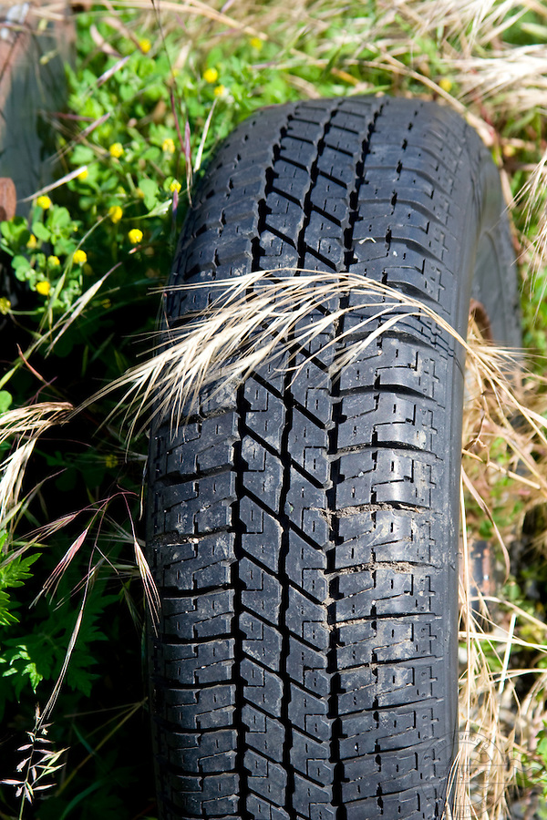 Tire surrounded by weed