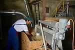 ROMANIA Banat, village Firiteaz, Bio Farmland, a farm run by swiss family / RUMAENIEN Banat, Firiteaz, BIO FARMLAND, betrieben von den Schweizer Einwanderern Familie Häni und Siegrist, rumaenischer Mitarbeiter in kleiner Getreidemuehle