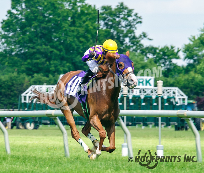 Knee Socks winning at Delaware Park on 6/2/16