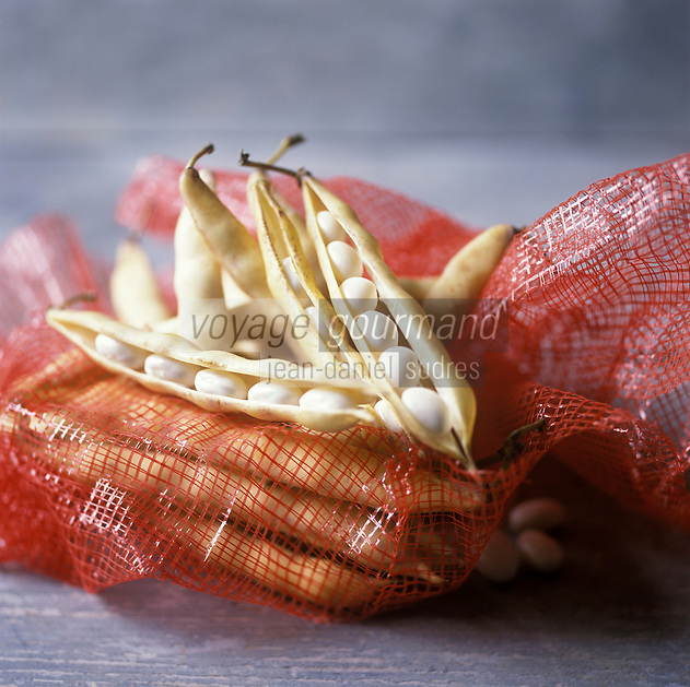 Europe/France/Bretagne/22/Côtes-d'Armor/Paimpol: Coco de Paimpol AOP  - Haricot demi sec - Stylisme : Valérie LHOMME //  Europe, France, West France, Brittany, Cotes d'Armor :  AOP Coco de Paimpol,  Paimpol beans