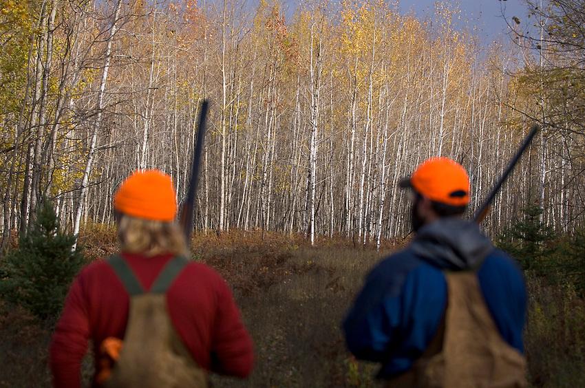 A pair of hunters pursue grouse and woodcock near Gwinn Michigan.