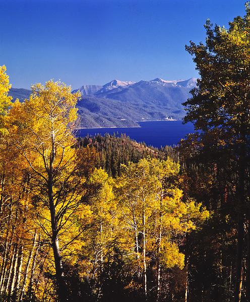 Lake Tahoe Scenic Fall Colors on Aspens