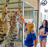 TAE- Big Cat Habitat, Sarasota Fl 5 12