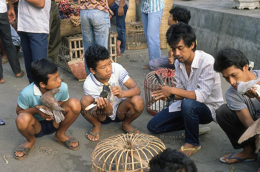 Indonesia, Java island: pigeon trainers in Kota Gede' market in Yogyakarta..Indonesia, Giava: addestratori di piccioni nel mercato di Kota Gede' a Yogyakarta.