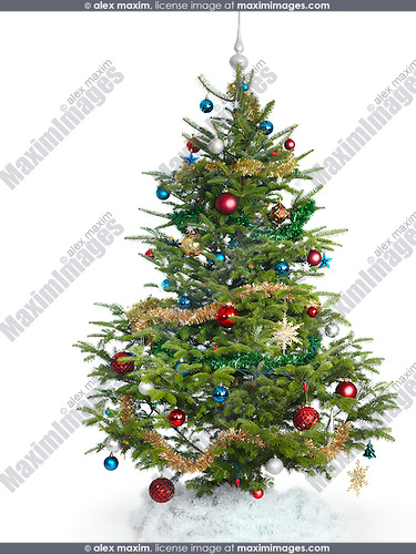 Decorated real Christmas tree isolated on white background