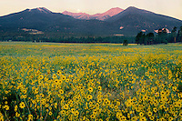 San Francisco Peaks at sunrise<br />