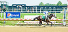 Colony Strike winning at Delaware Park on 6/120/12