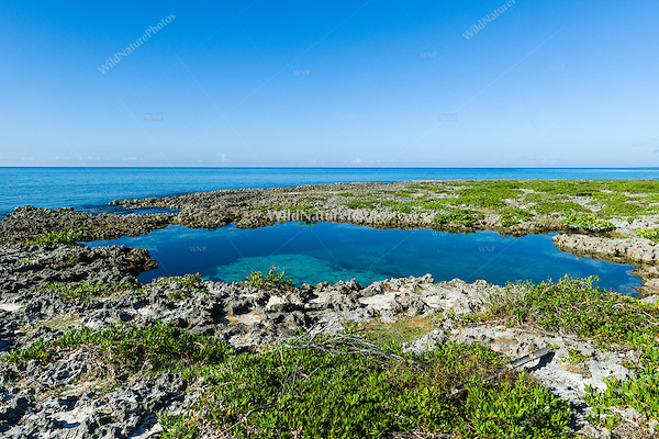 A coastal lagoon along the south shore of Guanahacabibes Peninsula, Cuba.