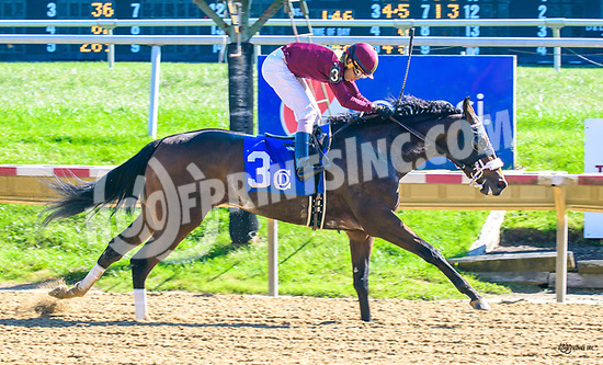 Mila Jane winning at Delaware Park on 10/19/17