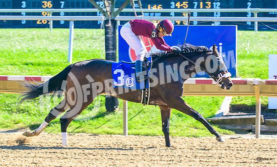 Mila Jane winning at Delaware Park on 10/19/17