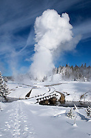 A geyser erupts in the distance along a snow covered trail at Yellowstone National Park on a cold morning in Januar