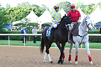 HOT SPRINGS, AR - April 15: Classic Empire #2 and jockey Julien Leparoux in the post parade prior to the Arkansas Derby at Oaklawn Park on April 15, 2017 in Hot Springs, AR. (Photo by Ciara Bowen/Eclipse Sportswire/Getty Images)