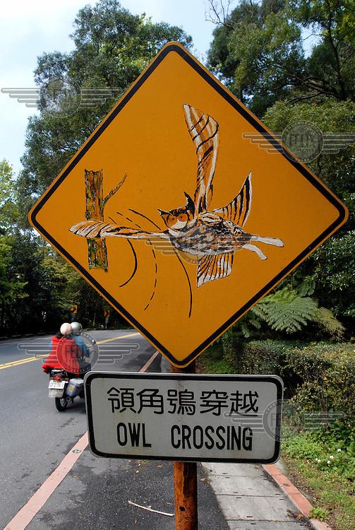 An owl crossing sign in Yangmingshan National Park.