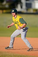Wayne State Warriors utility player Mickey Mohner #19 during a game against Slippery Rock at Chain of Lakes Stadium on March 15, 2013 in Winter Haven, Florida.  Illinois State defeated Long Island 6-4.  (Mike Janes/Four Seam Images)
