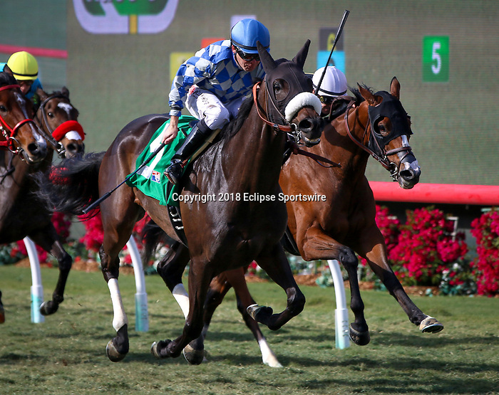 DEL MAR, CA: November 22: #5 India Mantuana with Tyler Baze go wire to wire in the Grade III Red Carpet Handicap at Del Mar Thoroughbred Club  on November 22, 2018 in Del Mar, California (Photo by Chris Crestik/Eclipse Sportswire)