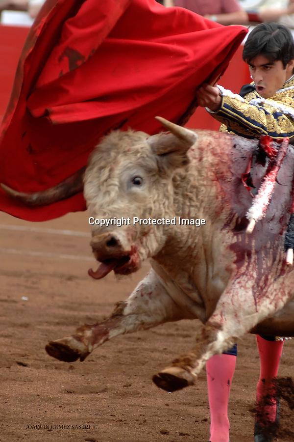 24 JULIO 2008 SANTANDER. El torero  Perera dando un pase de pecho en la feria de Santiago en la corrida del dia 24 julio..foto JOAQUIN GOMEZ SASTRE