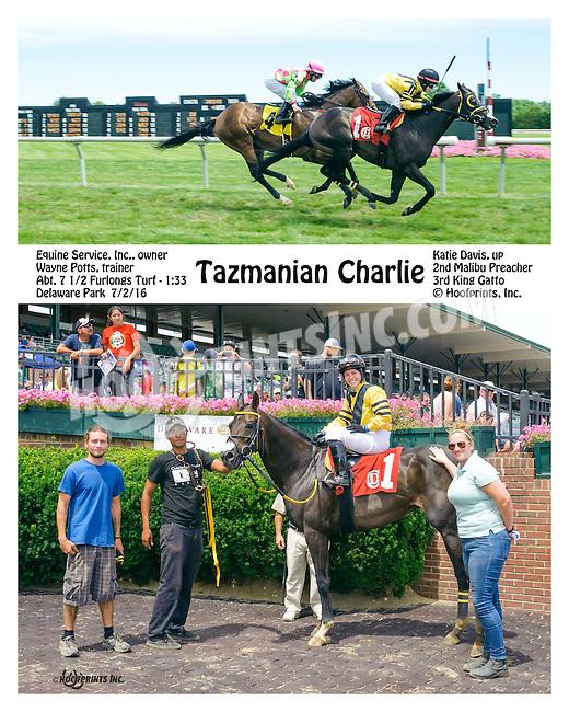 Tazmanian Charlie winning at Delaware Park on 7/2/16