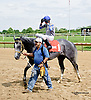 Joint Custody winning The Stanton Stakes at Delaware Park racetrack on 6/26/14