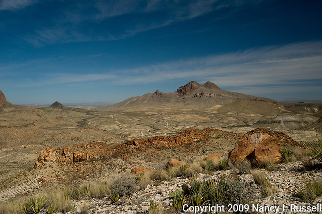 Desert landscape from the top of a mesa during a jeep tour north of Study Butte, Texas in the Big Bend area