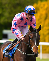 Magical Force ridden by Rob Hornby goes down to the start of The Simon & Nerys Dutfield Memorial Novice Stakes   during Afternoon Racing at Salisbury Racecourse on 16th May 2019