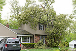 CHESHIRE, CT. 16 May 2018-051618BS89 - Another house on Bellamy Road in Cheshire is condemned after a tree sliced through the upper floors of the house during yesterday's strong storms on Wednesday afternoon. Bill Shettle Republican-American