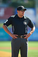 Umpire Mike Wiseman during a game between the New Hampshire Fisher Cats and Reading Fightin Phils on June 6, 2016 at FirstEnergy Stadium in Reading, Pennsylvania.  Reading defeated New Hampshire 2-1.  (Mike Janes/Four Seam Images)