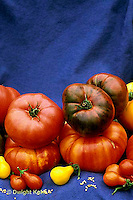 HS09-061x  Tomato - heirloom tomatoes - striped German, Pruden purple, Cherokee purple, red and yellow pear varieties