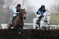 Halcyon Times ridden by Mr D Kemp (L) and Silver Tenor ridden by Mr J Docker jump the last during the William Bulwer-Long Memorial Novices Fox Hunters Chase