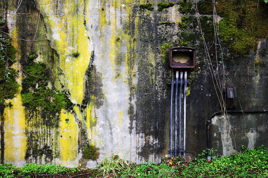 Rusty electrical box on moss and algae covered concrete bunker wall, Artillery Hill, Fort Worden State Park, Port Townsend, Washington, USA
