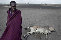 ARUSHA, TANZANIA - NOVEMBER 15: Daniel Lonyary, a Maasai, stands next to a dead cattle carcass on November 15, 2009 in a rural area north of Arusha, Tanzania. This area has been severely affected by drought the last two years and as many as 3-4000 cattle has died in recent months. The Maasai tribe populates the area and many of them has given up on farming and traveled to cities such as Arusha to look for work. Indigenous peoples globally, such as the Maasai in Tanzania and Kenya, are disproportionately affected by the impacts of climate change due to fragile and harsh ecosystems. (Photo by Per-Anders Pettersson)...