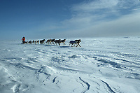 Susan Butcher Norton Sound near Elim Checkpoint Iditarod 1991