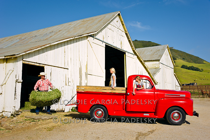 Dad bucking hay with his daughters in the 1949 Red Ford Truck, San Luis Obispo, California
