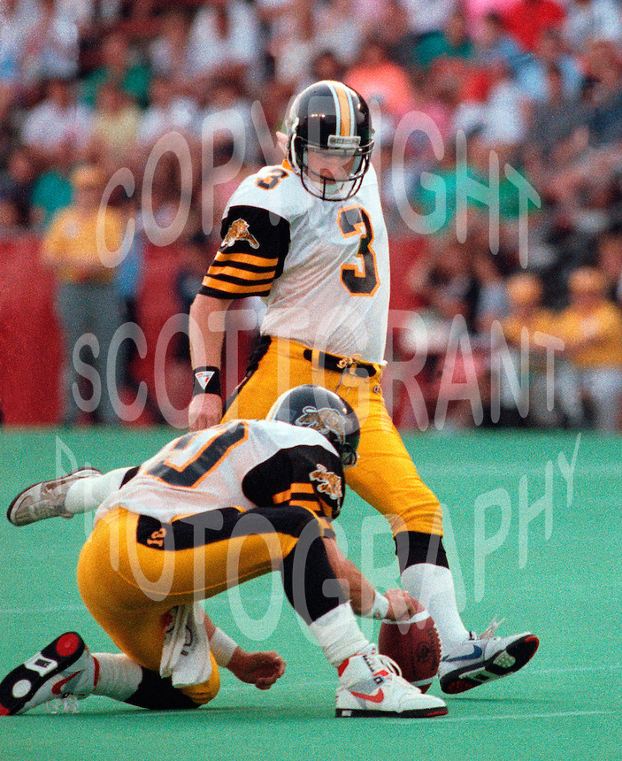 Paul Osbaldiston HamiltonTiger Cats. Copyright photograph Scott Grant