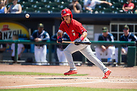 Springfield Cardinals infielder Irving Lopez (11) lays down a bunt on May 19, 2019, at Arvest Ballpark in Springdale, Arkansas. (Jason Ivester/Four Seam Images)