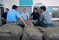 The Buyers, Mareeba Sales Floor, Mareeba, 2004.