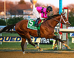 December 7th 2019:  Maximum Security [#5] ran an impressive Cigar Mile with Luis Saez in the irons for trainer Jason Servis.  The $750,000 Grade 1 race was at Aqueduct Race Track in Ozone Park, New York. Dan Heary/Eclipse Sportswire/CSM