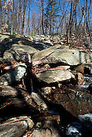 STREAMS<br /> Water Runs Over Rocks<br /> Harriman State Park, Haverstraw, NY