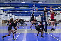 Impact Volleyball
