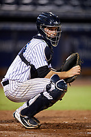 Tampa Tarpons catcher Kellin Deglan (25) during the second game of a doubleheader against the Lakeland Flying Tigers on May 31, 2018 at George M. Steinbrenner Field in Tampa, Florida.  Lakeland defeated Tampa 3-2.  (Mike Janes/Four Seam Images)