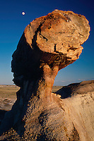 Pedestal logs<br />