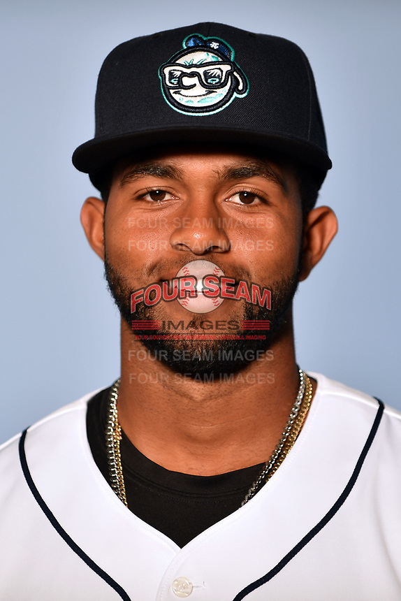 Asheville Tourists catcher Hidekel Gonzalez (15) poses for a photo at Story Point Media on April 3, 2017 in Asheville, North Carolina. (Tony Farlow/Four Seam Images)