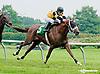 Dominate winning  at Delaware Park racetrack on 6/9/14