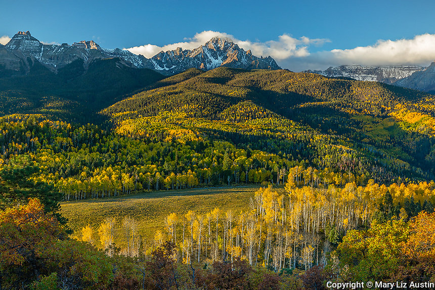 Uncompahgre National Forest, Colorado: Morning light on Mount Sneffels with hills of fall colored aspens and pines in the valley of East Dallas Creek