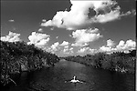1998-Bill Hickock swims near L-1 where the State park of the Florida Everglades meets the county park. Only in the county park are boats or motorized craft allowed. The Florida Everglades are a disappearing world. Overpopulation, the sugar and cattle industry, mismanagement of the land, droughts and bush fires are just a few of the problems the Florida Everglades are facing. Here Glen Wilsey driving his airboat. According to Glen the best thing about being a tour guide in the everglades is driving the airboats. Riding an airboat is fun but driving an airboat is an awesome feeling.