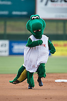 Kannapolis Intimidators mascot Tim E. Gator runs the bases between innings of the game against the Delmarva Shorebirds at CMC-Northeast Stadium on June 7, 2015 in Kannapolis, North Carolina.  The Shorebirds defeated the Intimidators 9-1.  (Brian Westerholt/Four Seam Images)