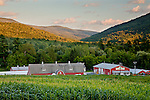 A farm at sunset in Williamstown, MA, USA