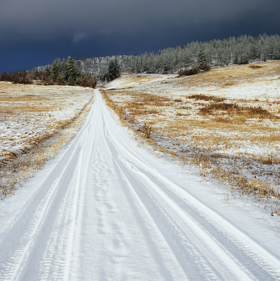 Recent vehicle travel leaves tracks along a snowy road near the Palouse region on Eastern Washington State.