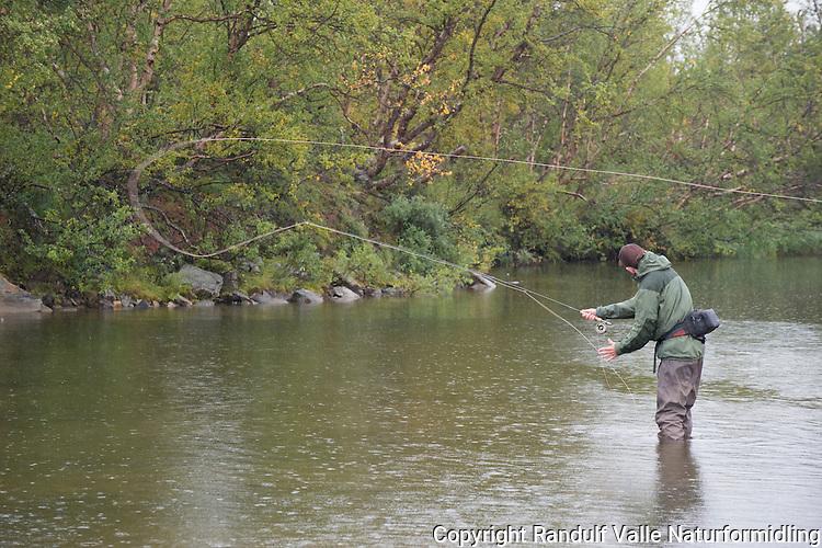 Mann fisker laks en sur dag sent i august. ---- Man fishing for salmon in late august.