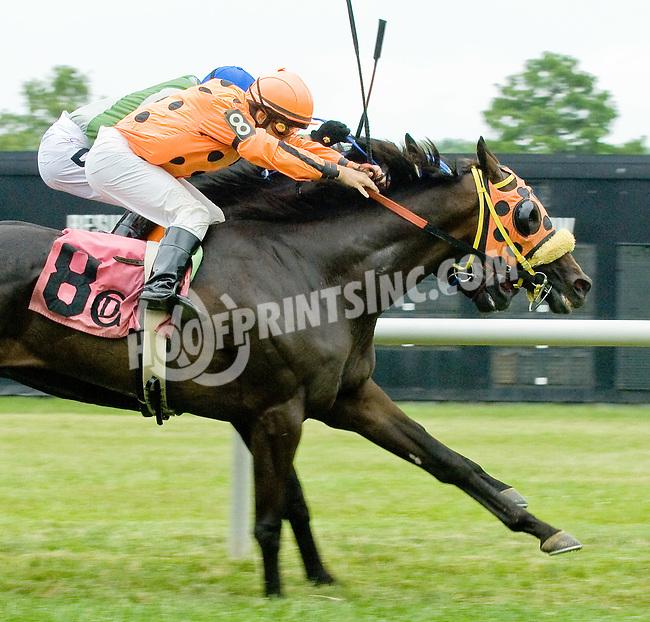 Momma's Happy winning at Delaware Park on 6/17/12