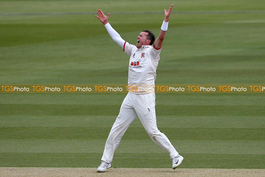 Peter Siddle of Essex celebrates after taking the wicket of Freddie van den Bergh during Surrey CCC vs Essex CCC, Specsavers County Championship Division 1 Cricket at the Kia Oval on 12th April 2019